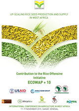 CORAF-up-scaling Rice seed production and supply in West Africa