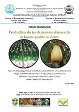 Production du jus de pomme d'anacarde de bonne qualité au Bénin