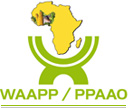 west africa Agricultural Productivity Program