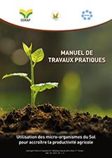 MANUEL DE PRATIQUE : Utilisation des micro-organismes du sol pour accroître la productivité agricole