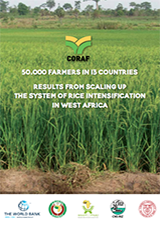 Results from Scaling up the System of Rice Intensification in West Africa