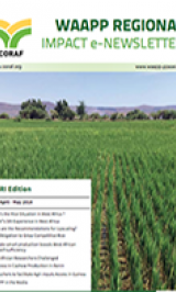 WAAPP REGIONAL IMPACT E-NEWSLETTER N°5