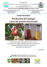 Production du vinaigre à base de pomme d'anacarde
